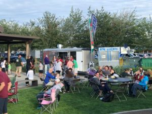 Summer event in the park with people picnicking in Blaine