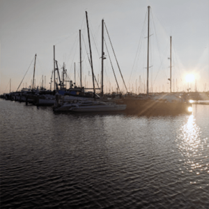 boats at the harbor of blaine