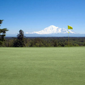Golfing in Blaine, Washington, Whatcom County