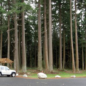 Lincoln Park in Blaine, Washington