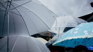 Umbrellas in Blaine, Wa