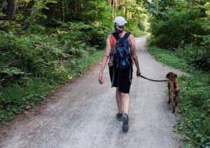walking a dog in Blaine, Washington