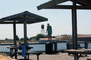 Jorgensen Pier jumping blaine by the sea