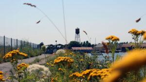 Jorgensen Pier with water tower