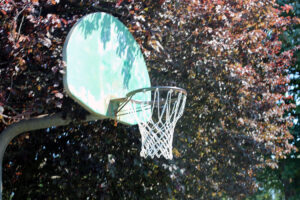 Basketball hoop at Salishan Park
