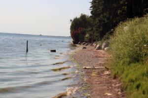 Dakota Creek Kayak Launch waves at the shore in blaine