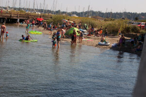 Swimmers at Semiahmoo Spit