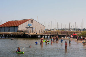 swimming at Blaine's Semiahmoo Spit in Whatcom County