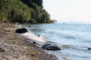 waves crash on the shores of Semiahmoo in Blaine