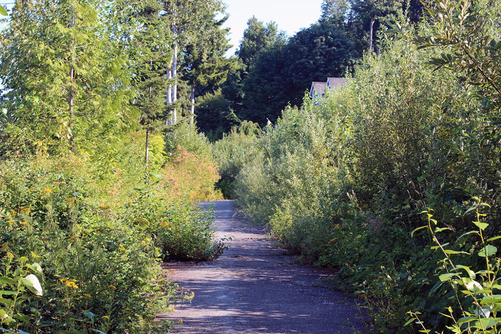 Drayton Harbor trail next to Semiahmoo State Park
