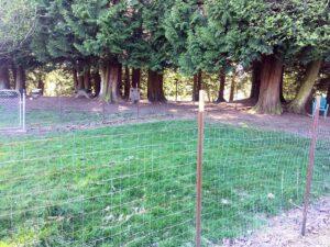 Skullman park in Blaine, Washington for dogs