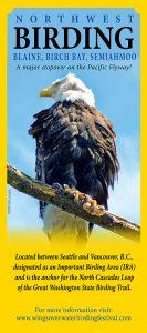 Northwest Birding Areas in Blaine WA